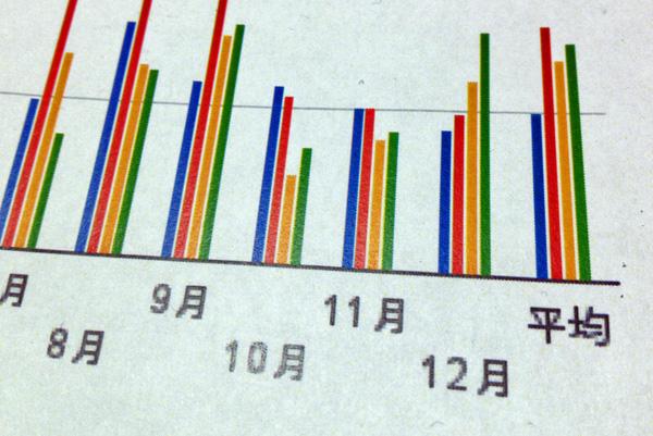 2012年の水道光熱費を棒グラフにして俯瞰してみた