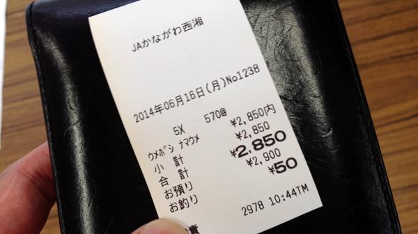 umeshigoto-2014-01-03
