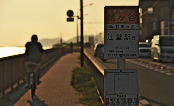 月刊 こけまり(2015年8月)
