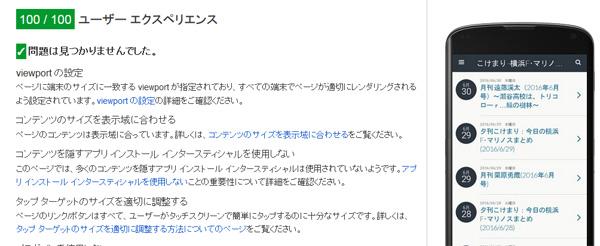 kokemari-report-2016-summer-03