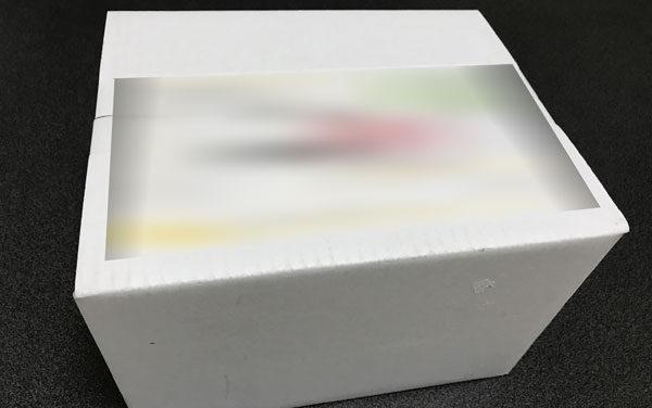 カシオG-SHOCK×B.LEAGUEコラボモデル「横浜ビー・コルセアーズ」バージョンを買いました。