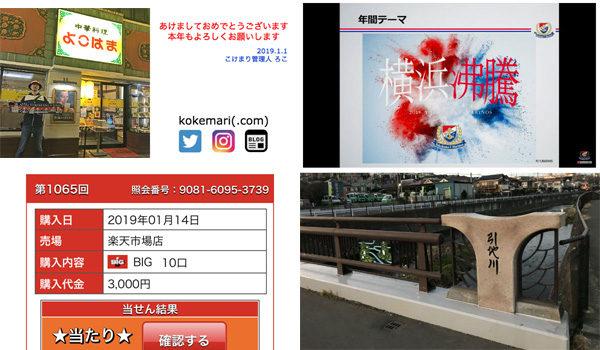 月刊 こけまり(2019年1月)